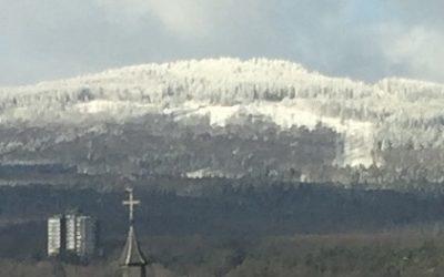 Klimawandel in Kronberg